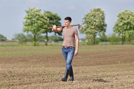 granjero: Agricultor joven atractiva con la azada caminar en campo de maíz en primavera