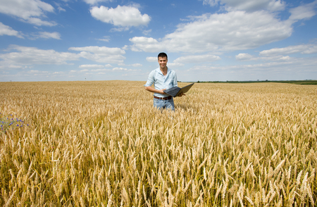 satisfied people: Businessman with laptop standing in ripe wheat field Stock Photo