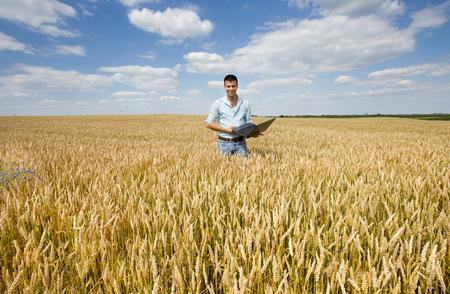 Businessman with laptop standing in ripe wheat field Archivio Fotografico