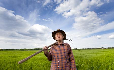 hayfork: Senior farmer carrying hayfork on shoulder on green barley field in spring time and looking in the sky
