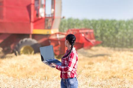 chemise carreaux: Jeune femme belle en chemise � carreaux debout avec un ordinateur portable dans le champ de bl� et en regardant moissonneuse-batteuse