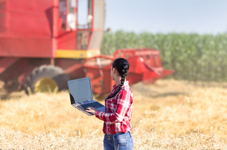 business woman working: Young beautiful woman in plaid shirt standing with laptop in wheat field and looking at combine harvester Stock Photo