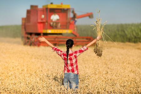 raised arms: Young woman in plaid shirt standing on wheat field with raised arms in front of combine harvester Stock Photo