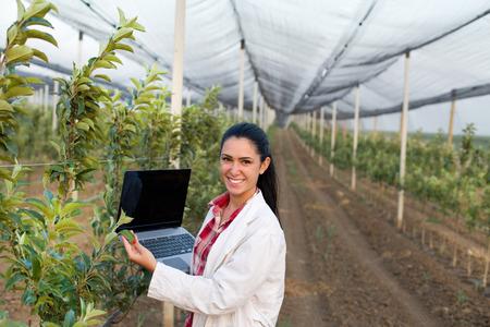 Jonge vrouw agronoom met laptop staan naast appelboom in de moderne boomgaard met anti hagelnet