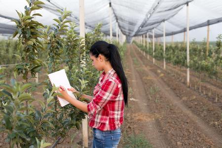 Jonge vrouw agronoom staande naast appelbomen in moderne boomgaard met anti hagel netto