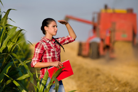 agriculture landscape: Beautiful girl agronomist with note book standing in golden wheat field, combine harvesting in background