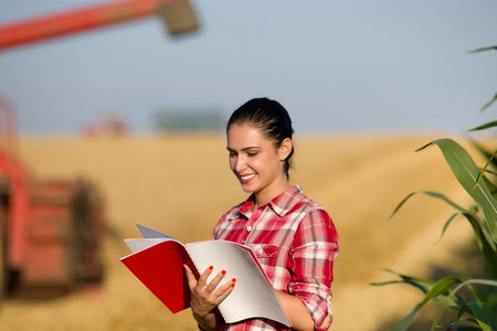 field study: Beautiful girl agronomist with note book standing in golden wheat field, combine harvesting in background