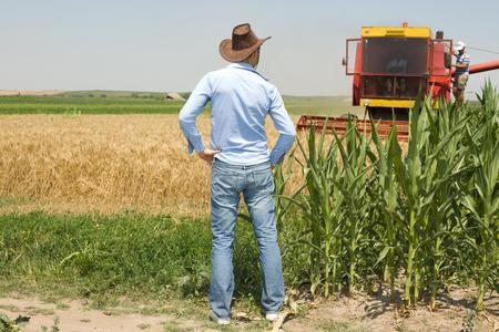vaquero: Agricultor atractiva joven con sombrero de vaquero de pie en el campo y mirando a cosechadoras Foto de archivo
