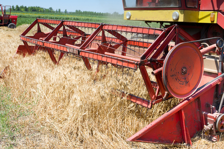 yielding: Close up of combine harvester working in barley field