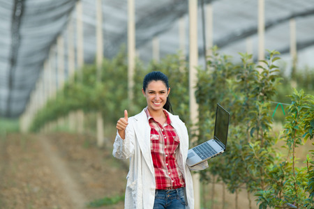 job satisfaction: Young woman agronomist with laptop showing thumb up next to apple trees in modern orchard with anti hail net Stock Photo