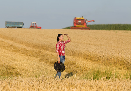 Beautiful young girl with cowboy hat  looking far away on wheat field, combine harvester and tractor with trailer working in background