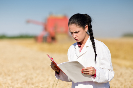 agronomist: Young woman agronomist in white coat reading documentation on wheat field. Combine harvester working in background