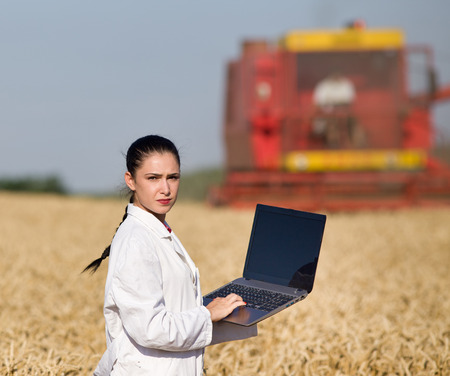 agronomist: Young woman agronomist in white coat holding laptop in golden wheat field during harvest, combine in background