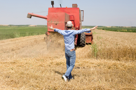 raised arms: Satisfied man with raised arms looking at combine harvester during wheat harvest Stock Photo