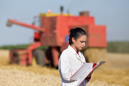 agronomist: Young woman agronomist standing in golden wheat field and writing notes. Combine harvester working in background