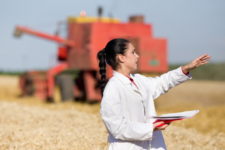 agronomist: Young woman agronomist standing in golden wheat field in front of combine harvester and talking to someone Stock Photo