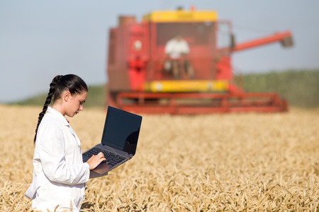 white coat: Young woman agronomist in white coat working on the laptop in golden wheat field during harvest, combine in background Stock Photo