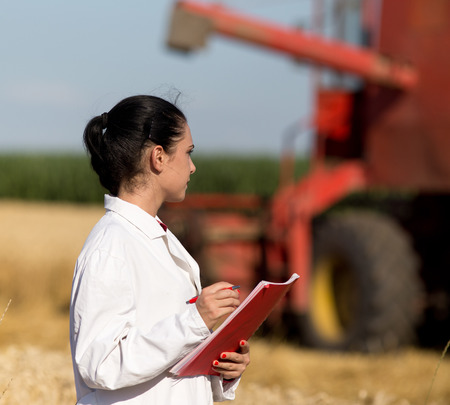 agronomist: Young woman agronomist in white coat standing in golden wheat field during harvest, combine in background Stock Photo