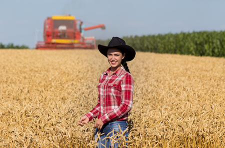 black cowgirl: Cowgirl with plaid shirt and black hat walking in ripe wheat field during harvest