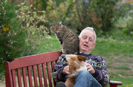 purring: Senior man playing with his pets on the bench in park, dog sitting in his lap and cat on shoulder Stock Photo