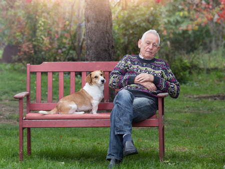old age care: Cute dog sitting next to his depressed senior owner on bench in garden