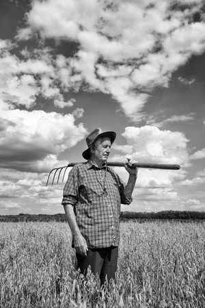 agriculture landscape: Proud old man farmer holding fork and looking at his field