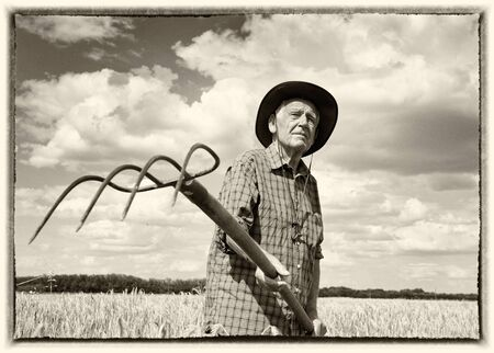 persone nere: Vecchia immagine con cornice bianca di uomo anziano a lavorare con hayfork nel campo orzo maturi