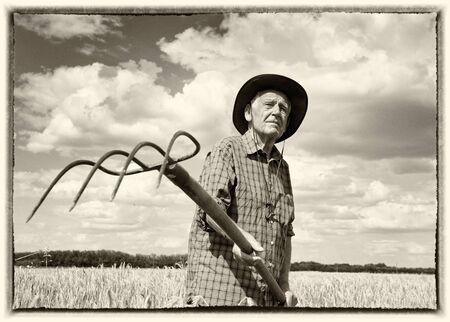 persona mayor: Vieja imagen con marco blanco del hombre mayor que trabaja con hayfork en el campo de cebada madura Foto de archivo