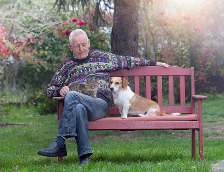 Homem sênior com seus animais de estimação sentado no banco no parque