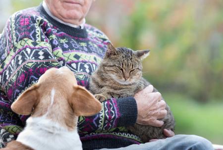 Senior man die een kat in zijn armen en hond kijken naar hem