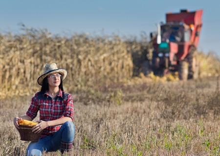 elote: La chica joven agricultor celebración de la cesta con los granos en el campo durante la cosecha de maíz