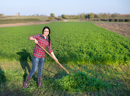 hayfork: Young happy farmer girl working in the field, collecting alfalfa with hayfork