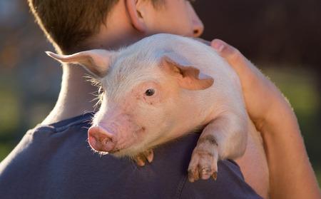 Jonge landbouwer bedrijf schattige biggetje op zijn schouder Stockfoto