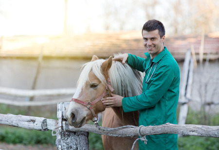 person outdoors: Young smiling veterinarian cuddling horse on the ranch