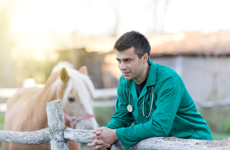 Young attractive veterinarian standing beside pony horse on the ranch
