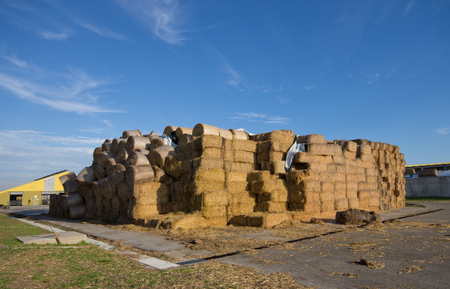country store: Large pile of hay bales stacked on the ranch Stock Photo