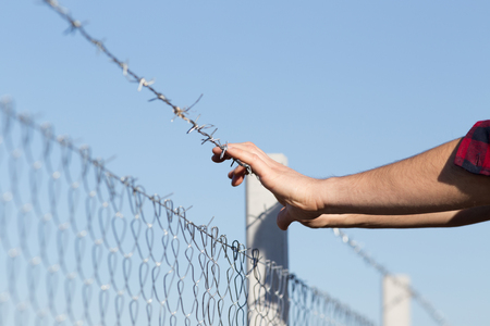 barbed wire fence: Close up of male hands holding barbed wire fence and begging for help