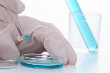 holding close: Close up of scientists hands holding capsule with tweezers above petri dish. Medical research concept