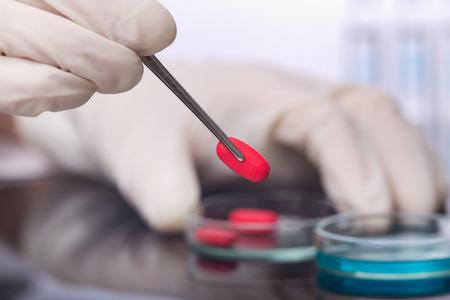 Gros plan des mains de scientifique tenant pilule rouge avec des pincettes au-dessus boîte de Pétri. concept de recherche médicale