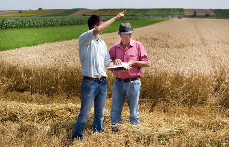 campesino: Campesino y negocios que buscan en el cuaderno en el campo de trigo