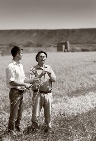 campesino: Campesino con las orejas de trigo a socio de negocios en el campo