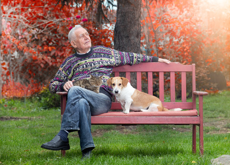 lap dog: Senior man sitting on bench in the park with cat in the lap and dog beside him Stock Photo