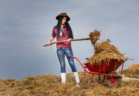 working animal: Young pretty country woman working on the farmland, loading wheelbarrow with animal manure and straw