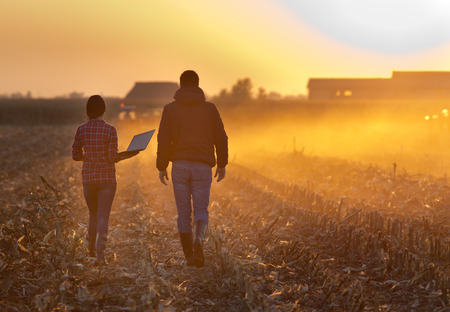 landowner: Woman engineer with laptop and landowner walking on harvested corn field during baling at sunset
