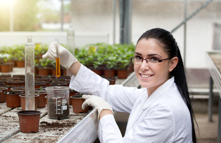 Young woman biologist in white coat holding test tube with orange chemistry in front of sprouts in flower pots