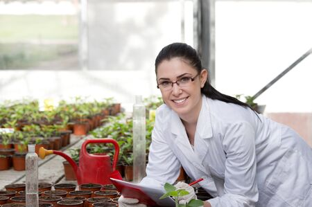 white coat: Young woman in white coat researching growth of sprouts in flower pots in greenhouse