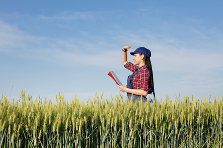 blocking: Young pretty farmer girl standing in green wheat field and looking in distance with hand blocking sun