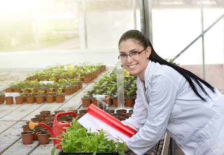 smiling woman in a greenhouse: Young woman in white coat researching growth of sprouts in flower pots in greenhouse. Looking at camera and smiling Stock Photo
