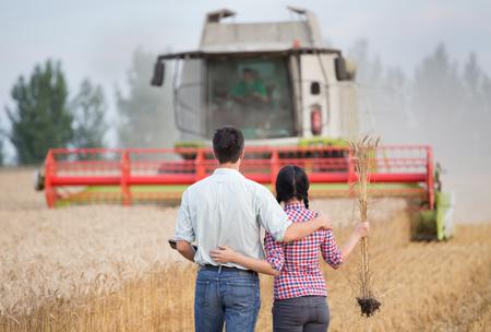 cosechadora: Pareja joven en el abrazo de pie en el campo de trigo y mirando la cosechadora en verano