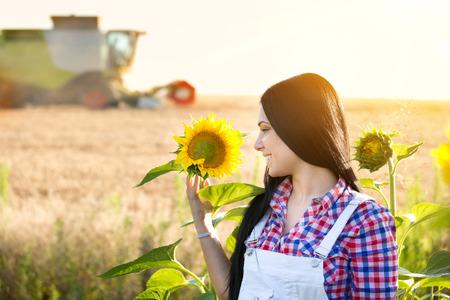 cosechadora: Hermosa mujer joven de pie en el campo de girasol. Cosechadoras de trabajo en segundo plano